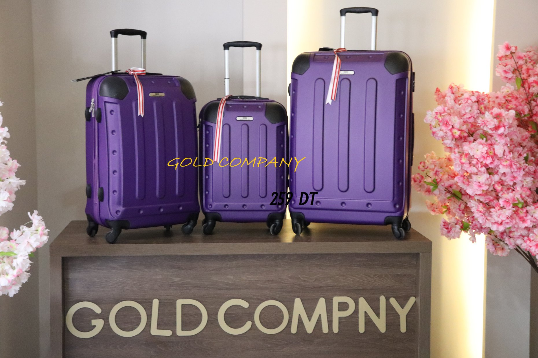 BAGAGERIE_GOLD_COMPANY2